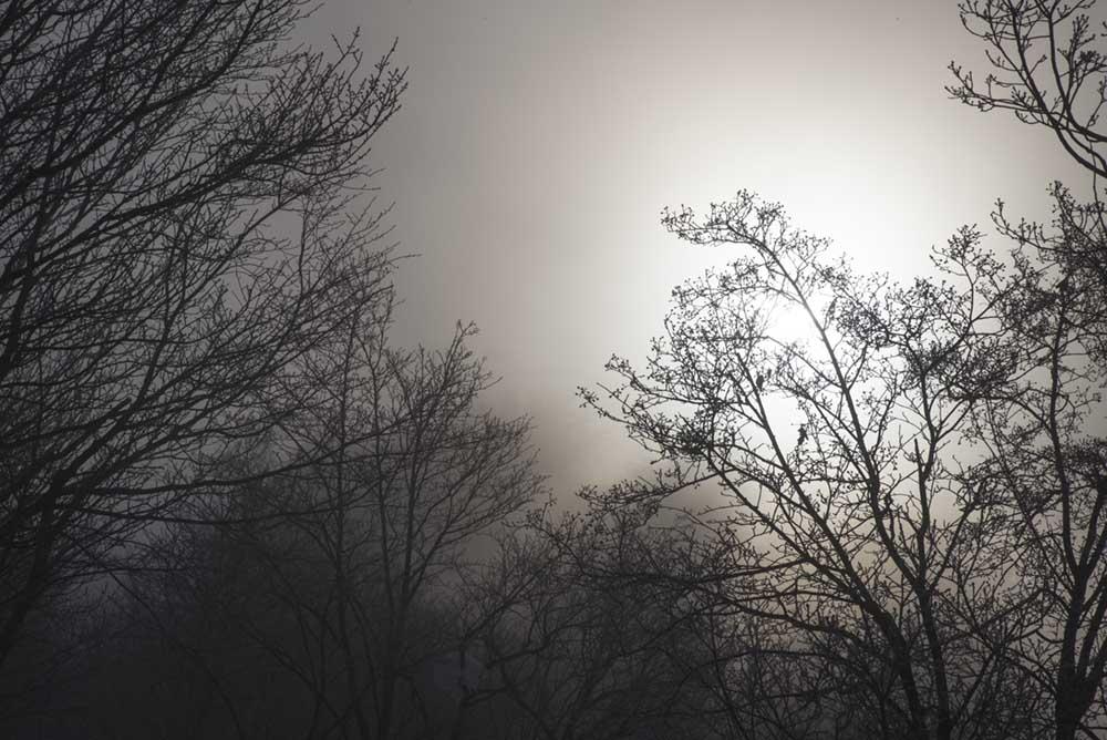 http://hakkaisan-photo.com/non/18.02.03-30.jpg