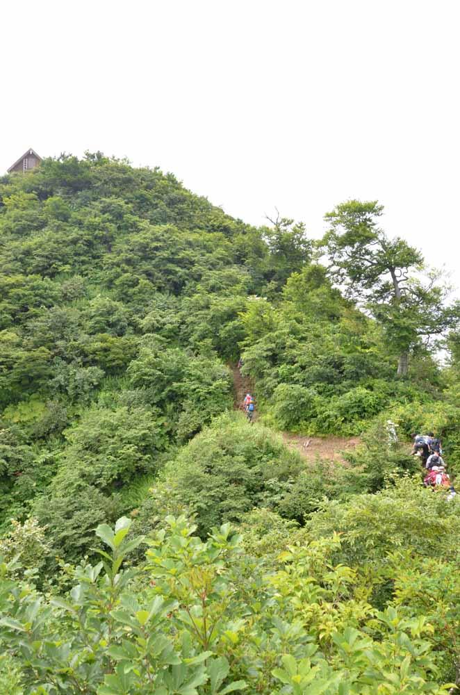 http://hakkaisan-photo.com/non/16.07.30-1.jpg