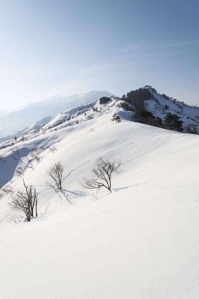 http://hakkaisan-photo.com/non/17.03.01-13.jpg