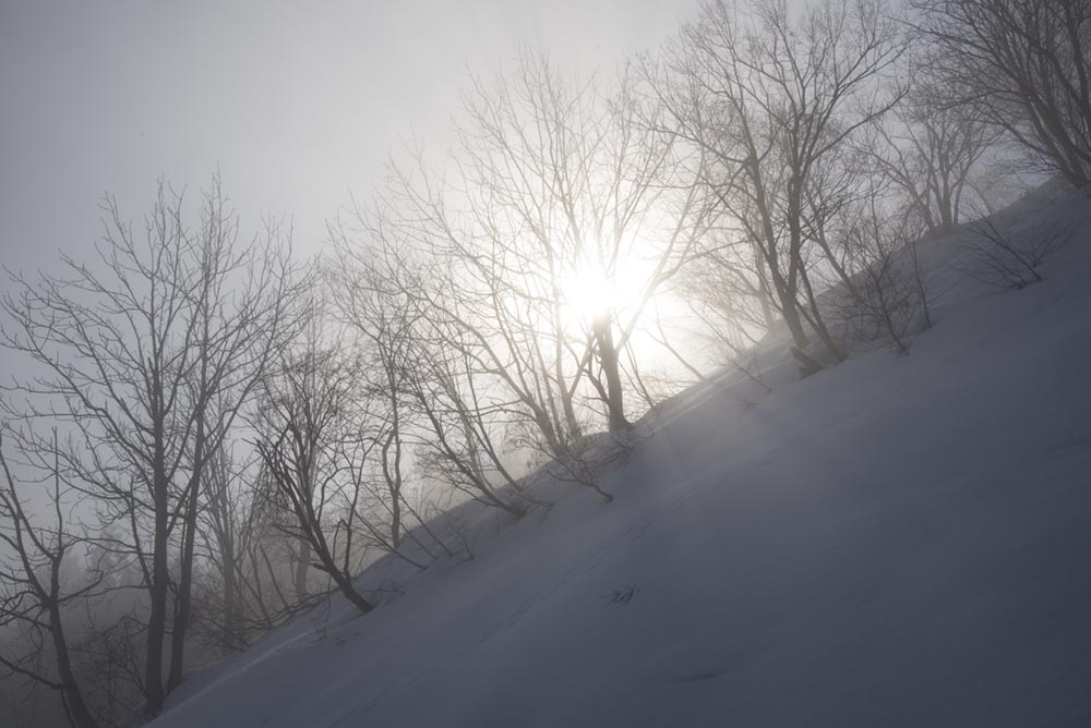 http://hakkaisan-photo.com/non/17.03.01-18.jpg
