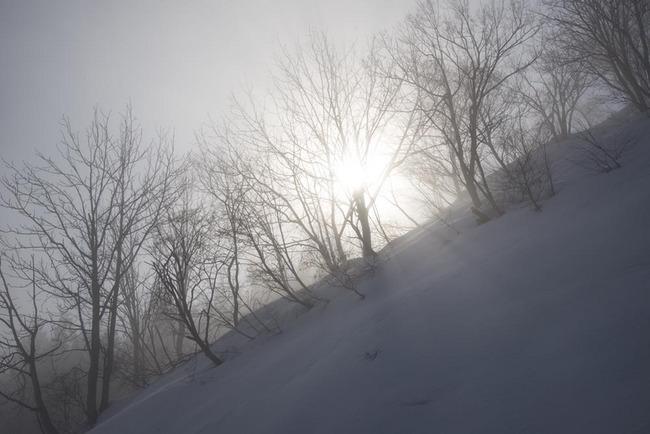 17.03.01-18.jpg