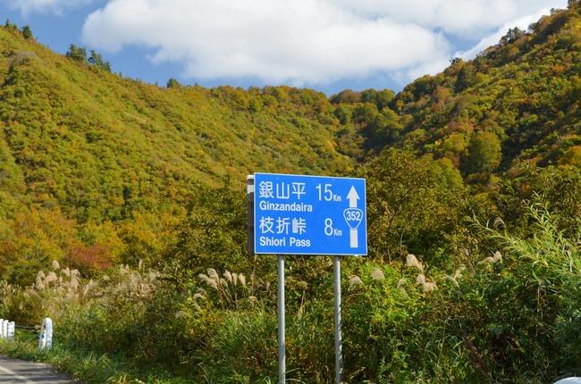 s-枝折り1.jpg