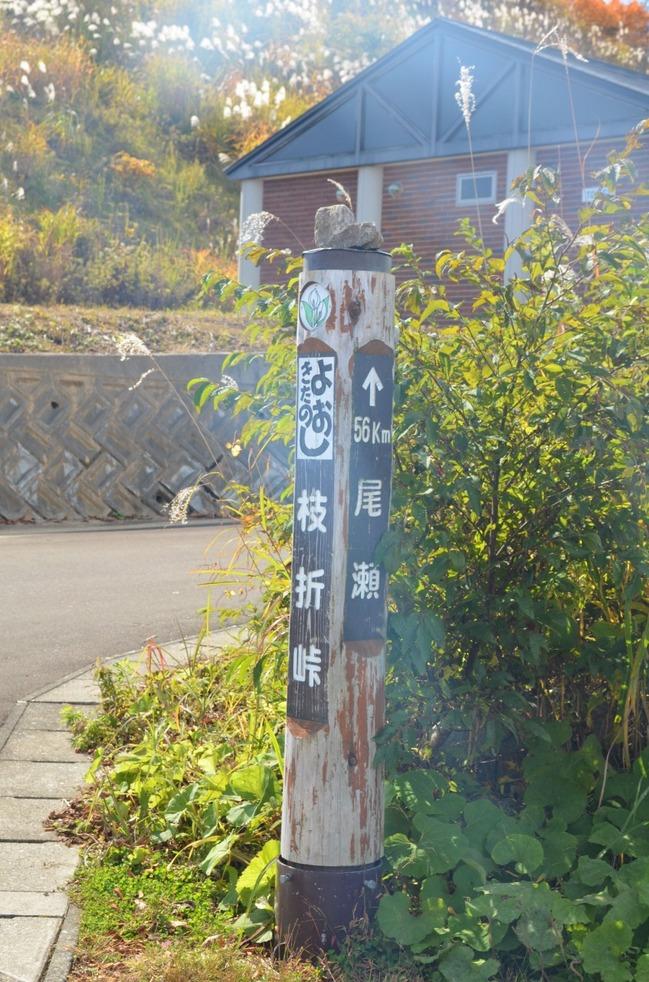 s-枝折り4.jpg