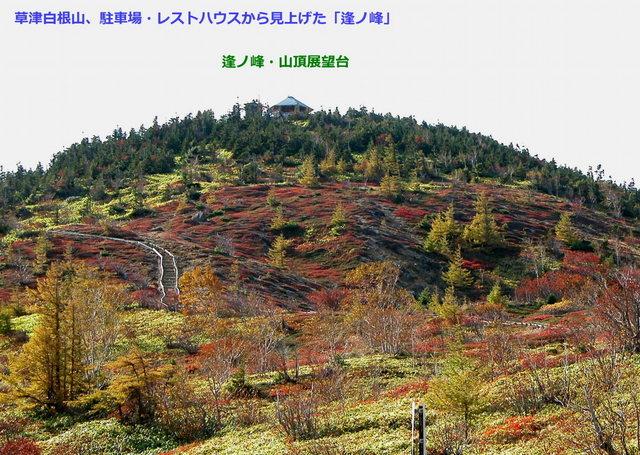 2003.10.10 -B 003 草津白根山.jpg