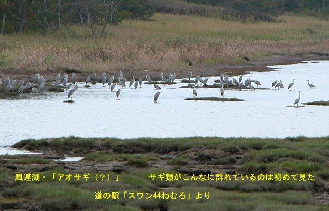 2004.09.29-A 根室・風連湖 006.JPG