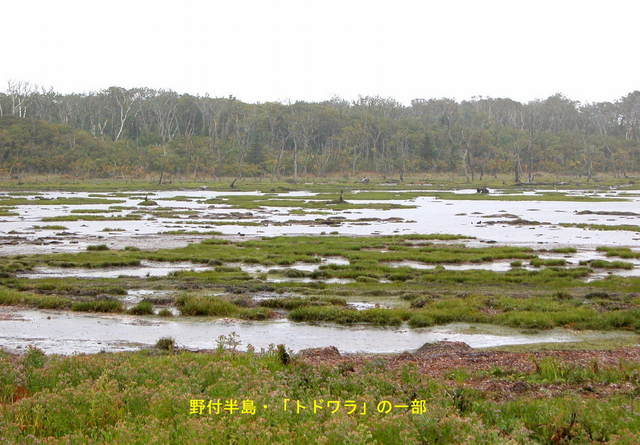 2004.09.30-A 野付半島 058.JPG