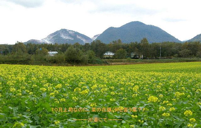 2004.10.02-C 川湯 011.JPG