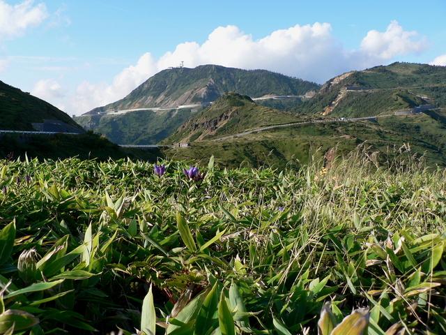 2005.09.13 -B 006 草津白根山.JPG