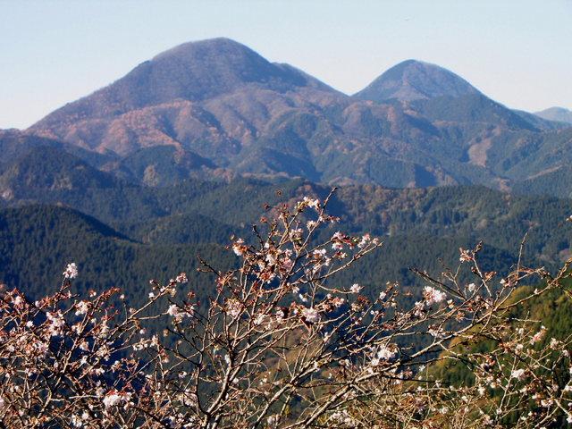 2012.11.20A -  032 鬼石・桜山公園.JPG