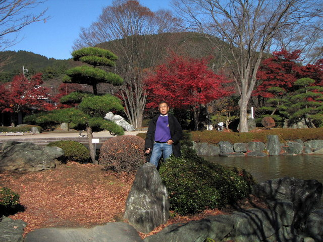 2012.11.20A -  040 鬼石・桜山公園.JPG