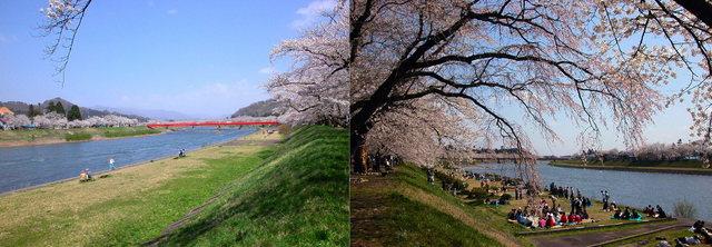 角館C(檜ノ木内川)B1 (1280×464).jpg