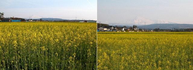 2002.04.24 道の駅・にしめ(1280×470).jpg