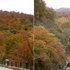 白神ライン (2004.10.24) B1.jpg