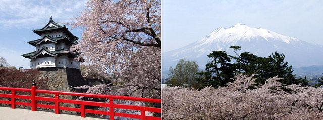 2006.05.09  弘前城 (天守閣) A2.jpg