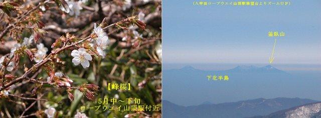 2004.05.26-八甲田 ロープウエイ- B1.jpg