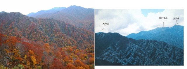 白神ライン (2004.10.24) B2.jpg