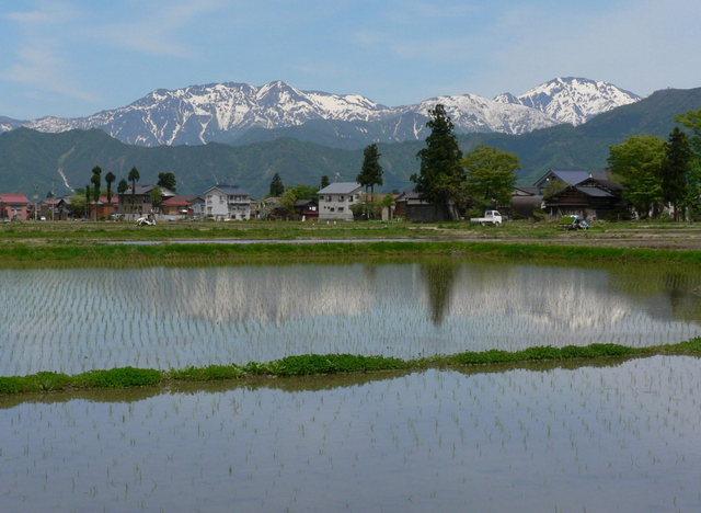 八海山 -  027 塩沢沢.JPG