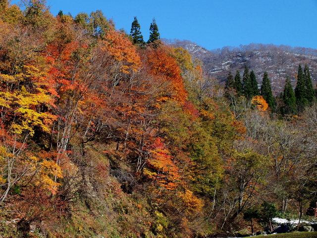 2013.11.17  002  (大源太).jpg