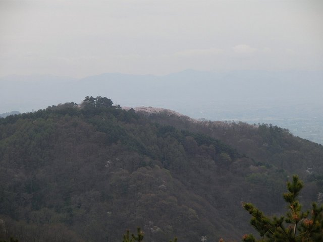2014.04.29 B- 011 長峰山 (10.08 to 10.31).JPG