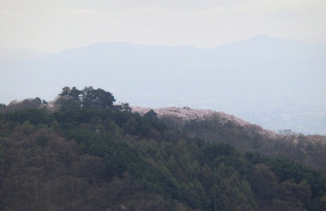2014.04.29 B- 005 長峰山 (10.08 to 10.31).JPG