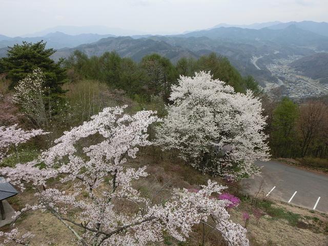 2014.04.29 B- 033 長峰山 (10.08 to 10.31).jpg