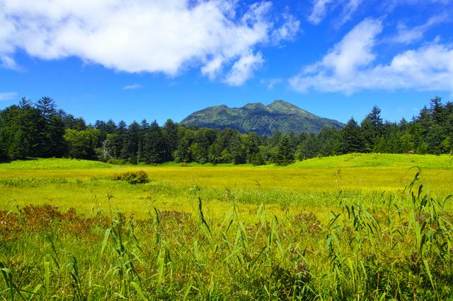 14.09.07-020 尾瀬 U ヤナギランの丘分岐点付近.jpg