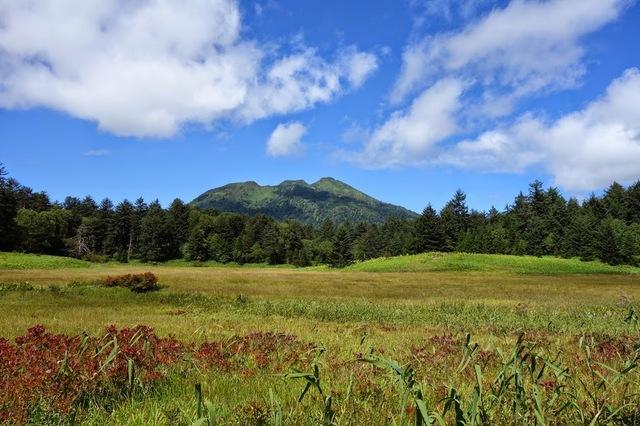 14.09.07-105 尾瀬 S ヤナギランの丘分岐点付近877×585.JPG