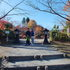 14.11.16 B - 001 鬼石「桜山公園」.jpg