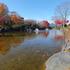14.11.16 B - 004 鬼石「桜山公園」.jpg