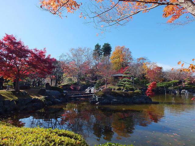 14.11.16 B - 005 鬼石「桜山公園」.jpg