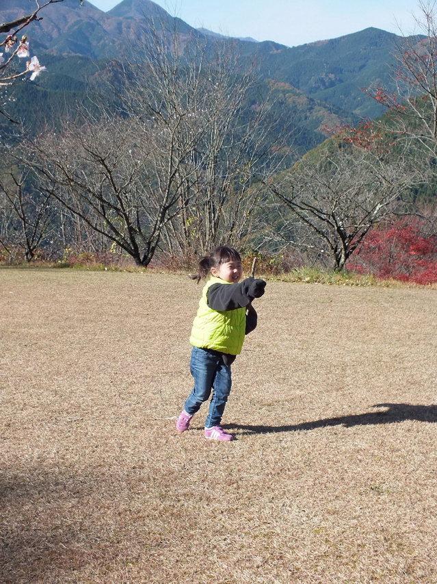 14.11.16 B - 028 鬼石「桜山公園」.jpg