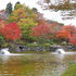 2014.11.06 B011 鬼石「桜山公園」.jpg
