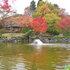 2014.11.06 B026 鬼石「桜山公園」.jpg