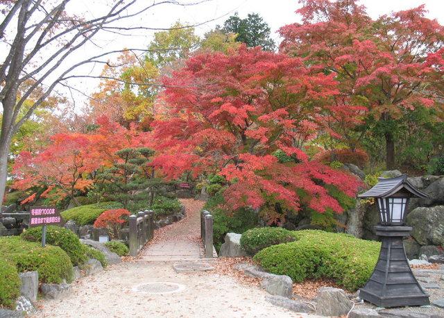 2014.11.06 B015 鬼石「桜山公園」.jpg