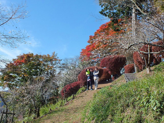 14.11.16 B - 057 鬼石「桜山公園」.jpg