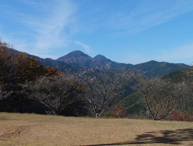 14.11.16 B - 029 鬼石「桜山公園」.jpg