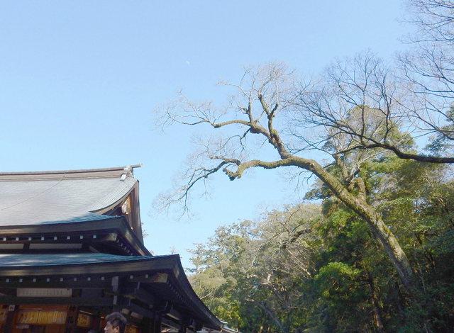 2015.03.28D 28 (15:00から16:30 頃)伊勢神宮・内宮.jpg