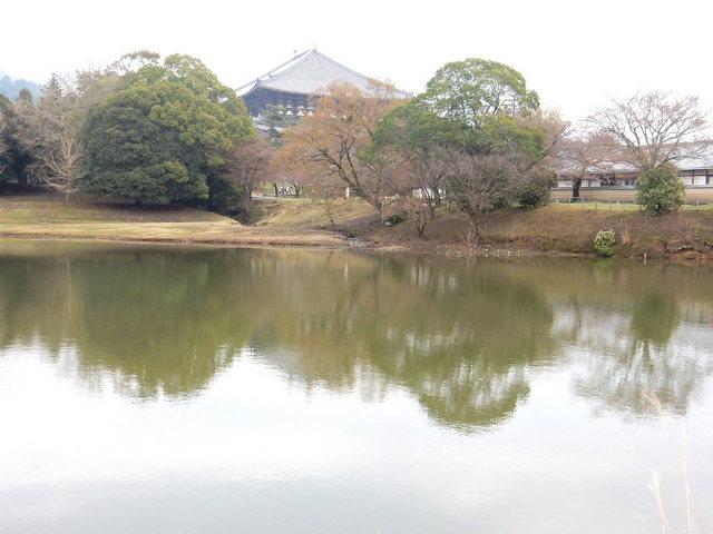 2015.03.29E 07 (16:10から17:30 頃)奈良東大寺.jpg
