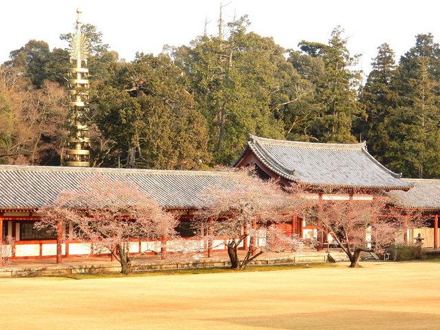 2015.03.29E 51 (16:10から17:30 頃)奈良東大寺.jpg