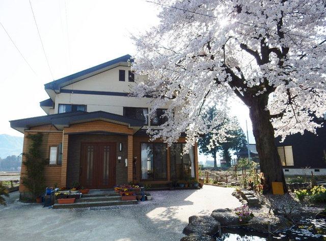 2015.04.28C _02 智通宅・桜(満開).jpg