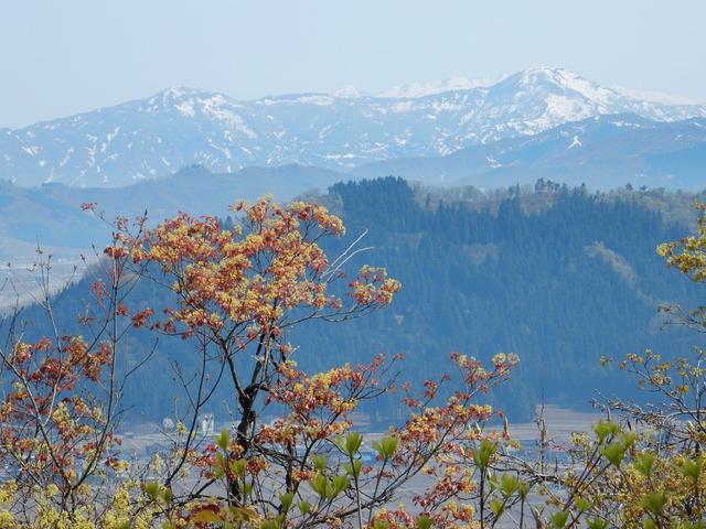 2015.04.28D _35 六万騎山.jpg