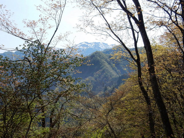 2015.04.28D _43 六万騎山.jpg