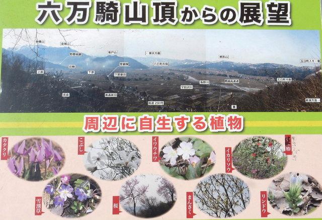 2015.04.28D _44 六万騎山.jpg