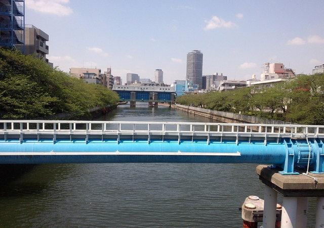 20150426_高橋から下流(隅田川)方向.jpg