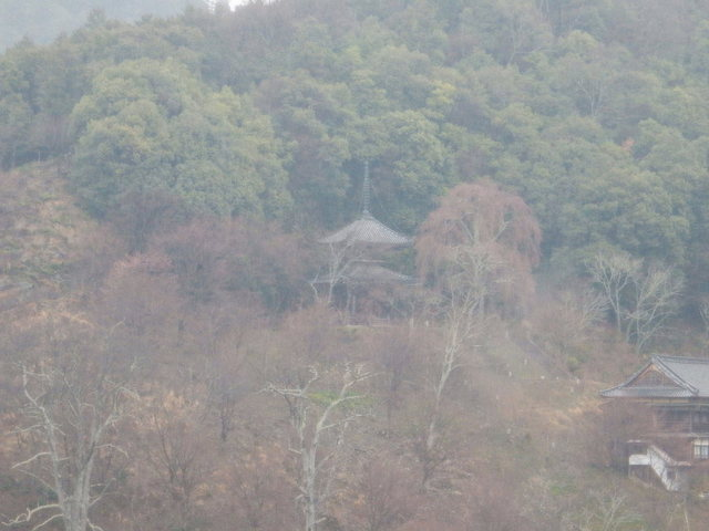 2015.03.29D 05 (12:20から14:20 頃)吉野山.jpg