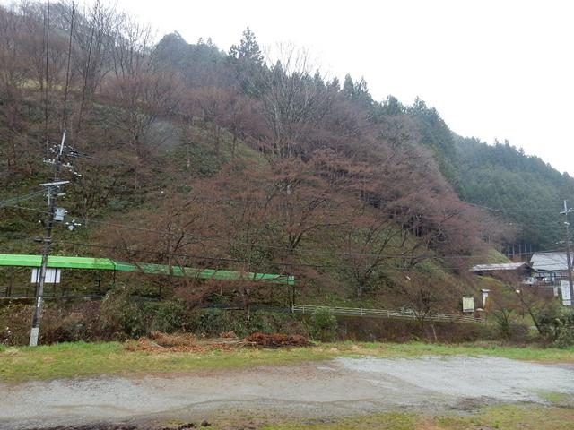 2015.03.29D 25 (12:20から14:20 頃)吉野山.jpg