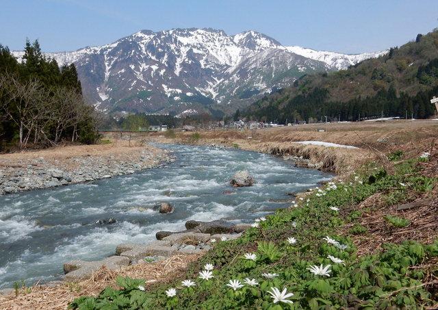 2015.04.28G _121 故郷の山 【八海山の春】.jpg