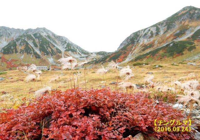 2015.09.24 -C076 立山 (室堂平).jpg