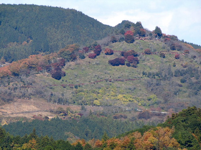 2012.11.20B -  020 城峯山公園.JPG