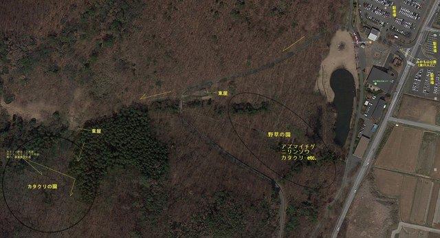 A004 三毳山公園東口 からカタクリの園 (Google Map).jpg